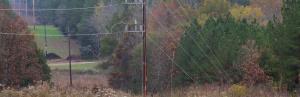 McClellanville Transmission Line