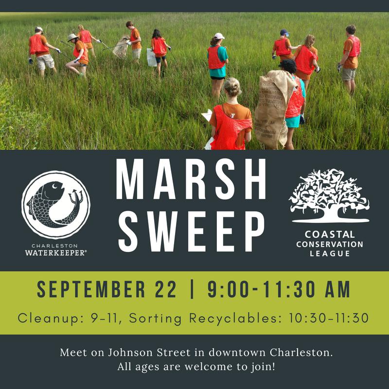 Beach Sweep/River Sweep - Coastal Conservation League